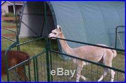 Round Style 12' W x 20' L x 8' H Green Horse/Livestock Run In Shelter House